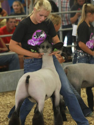 Nicole Zuber shows championship form in showing off her breeding doe at the Best of the Best event Saturday, July 28.