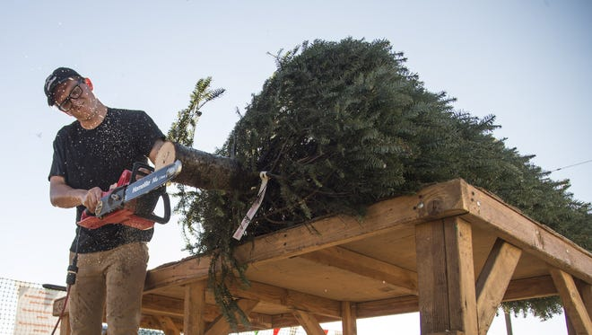 Mason Berry cuts the bottom of a noble fir Christmas tree at Tim Mitchell's Christmas Trees on Nov. 26, 2017, in Scottsdale.