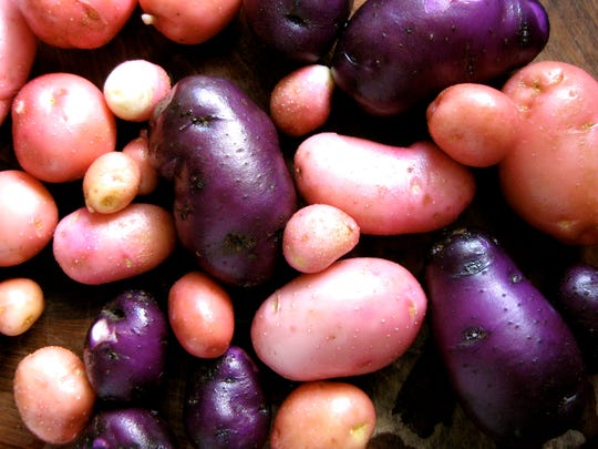 Potatoes come in many colors, each with different properties.
