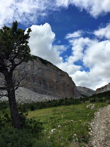 Blackleaf Canyon