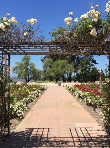 The rose garden at the Olivas Adobe in Ventura acts as a colorful gateway to the historic home and park.