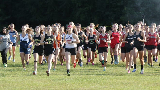 Girls compete at the start of the Sheboygan Lutheran Cross Country Invitational Tuesday, September 12, 2017, in Sheboygan, Wis.