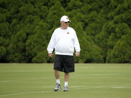 Cincinnati Bengals owner Mike Brown watches during