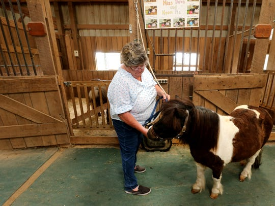 Dawn Field shows off her therapy pony Moon Pie, a UK