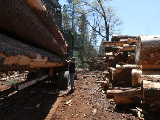 James Johns, center, makes sure his load of timber