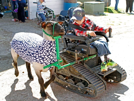 Braden Pederson, 10, of Cashton, leads his sheep, Addie, out of a barn at the Jeffeson County Fairground on Sept. 9. Pederson was born with spina bifada. He always wanted to be a farmer.