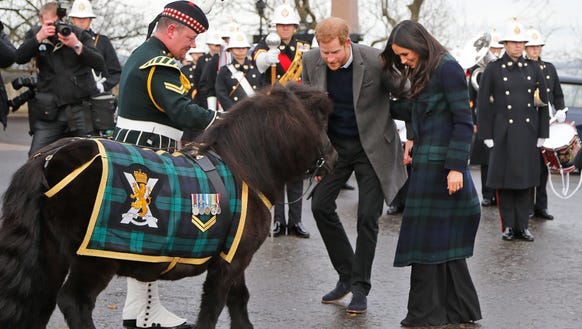 A prince and a pony? Meghan is living the dream.
