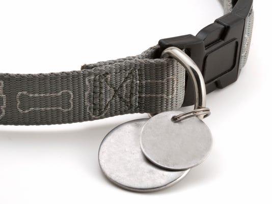 636033500222991636-dog-collar.jpg