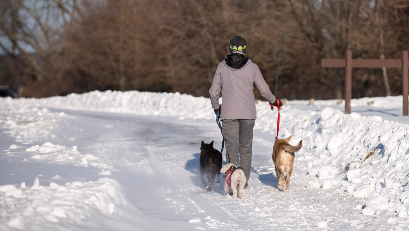 Want To Report A Pet Being Kept In The Cold Might Not Be - 10 hilarious conversations dogs have dial 911