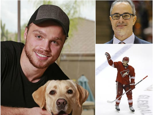 Coyotes Year in Review 2015