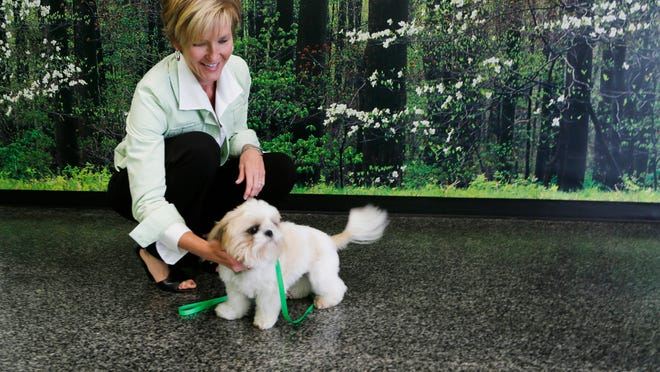 Owner Ann Shallenberger visits with Pixie in the day play room Tuesday at DogWood Kennel in Lafayette. Dogwood Kennel sits on 26 acres and features dog suites, cat condos, a large, indoor day play room, outdoor play space and grooming facilities.