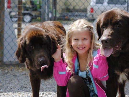 ELM 082614 hhds animal shelter prov.jpg