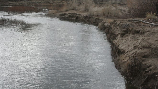 The Carson River runs alongside the Rolling A Open Space property in Dayton.