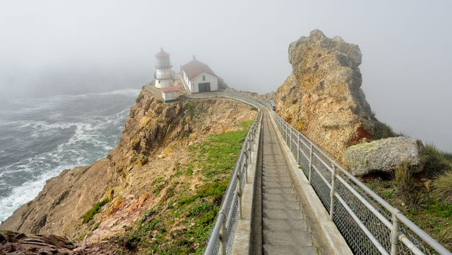 Point Reyes is a 30-minute drive from downtown San Francisco.