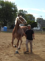Gary Myers of Wind Walker Farms shows a horse during