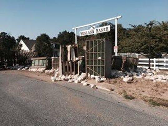 chicken_truck_3