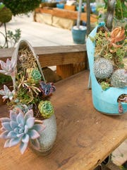 Tiny succulents are planted in old high heels.