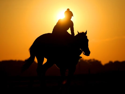 Horse Racing: Belmont Stakes-Workouts