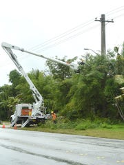 While in the basket of a bucket truck, Guam Power Authority line electrician Shane Tenorio uses a gas-powered chainsaw to trim bamboo stalks and other tree limbs near overhead power lines as co-worker Jessie Delos Reyes stacks the debris below, along Y-Sengsong Road on Wednesday, July 4, in preparation of strong winds anticipated with the approaching tropical depression.