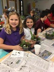 TBE Junior Gardeners work on their dish gardens.