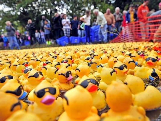 Duck Splash-01.jpg