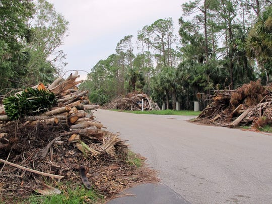 Large piles of trees and brush from Hurricane Irma front every home along English Oaks Lane off Oakes Boulevard in North Naples in early October 2017, three weeks after the storm struck.