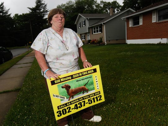 Donna Watson of Newark has spent more than three years searching for her lost miniature dachshund, Rudy. Recently, the Delaware Department of Transportation fined Watson $175 for lost-dog signs posted on utility poles in the area.