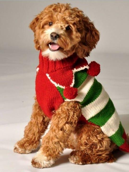 636163459122221900-Dog---Ugly-Sweater.jpg