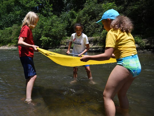 Students from Young Scholars Institute look for river life in the Harpeth River and check the water quality as part of a class offered at the summer camp.