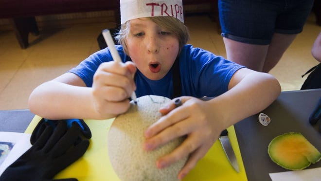 Tripp Keeton, 11, draws a bunny on his cantaloupe to use as a guide.