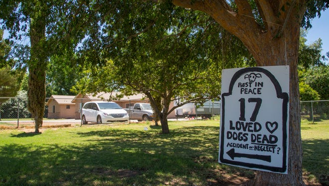 A sign asking whether the death of 17 dogs was an accident or neglect sits in the neighbor's yard outside the Green Acre Dog Boarding kennel in Gilbert, Ariz., on June 20, 2014.