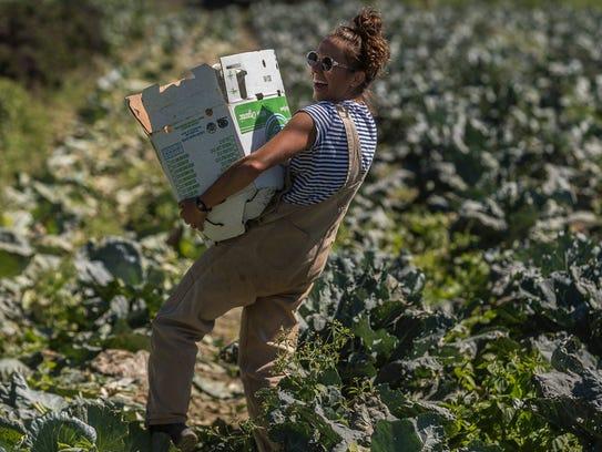 Sarah Alexander, gleaning and food rescue program coordinator