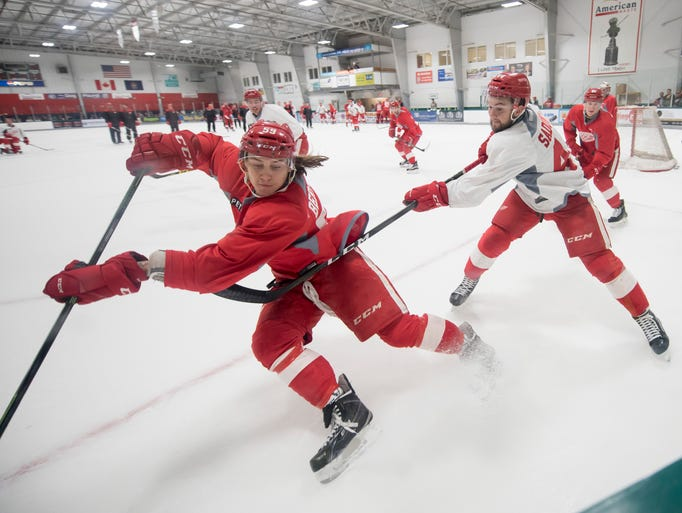 Left wing Tyler Bertuzzi and left wing Dylan Sadowy