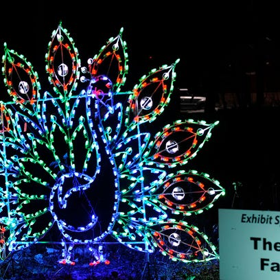 """A light fixture in the shape of Santa waving from his sleigh decorates the woods along the road through Lincoln Park during the third annual """"Lights at Lincoln"""" fundraiser holiday event on Dec. 3, 2014 in Manitowoc."""