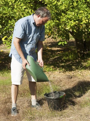Do not fertilize your trees and shrubs in fall. Stimulating any new growth on trees and shrubs in fall can make the unhardened shoots vulnerable to winter damage