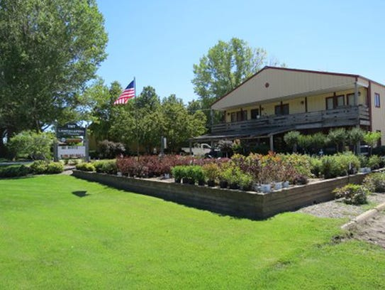 TNT Landscaping and Nursery