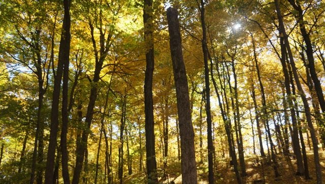 Holy Hill is a beautiful place for a fall hike.