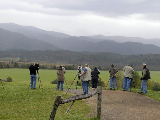 Photographers from a camera club line up on a Cades Cove mountainside for the morning sunrise in this file photo in Great Smoky Mountains National Park. Discover Life in America, will host the 18th annual All Taxa Biodiversity Inventory Conference March 19-21, in which biodiversity in the Smokies will be discussed.