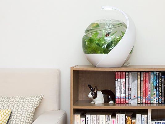 Avo fish tank on Kickstarter