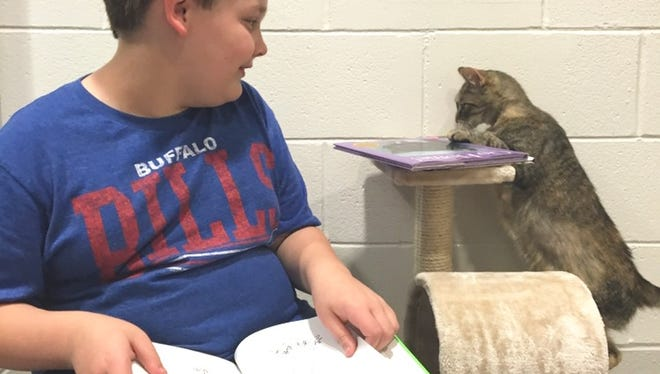 Zach bonded with Miss CheckMeowt at Lollypop Farm's Book Buddies, a reading program to provide kids a judgment-free setting to practice reading and to socialize cats waiting for adoption.