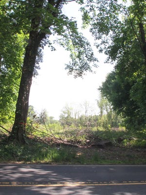 A glimpse into the land where a proposed town center would be built off Kings Highway East in Middletown.