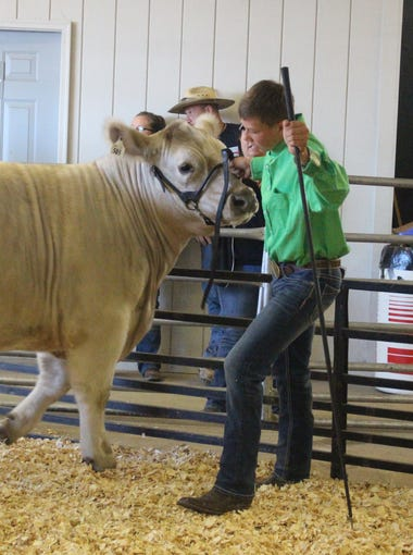 Chase Aiken's reserve champion market steer sold for $3.75 per pound at the Marion County Fair Sale of Champions on Saturday.