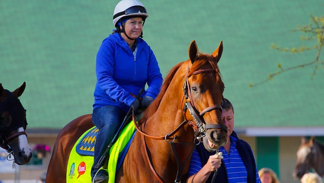 Dortmund, trained by Bob Baffert, gets walks onto the track to train  at Churchill Downs. Dana Barnes is in the saddle.April 27, 2015