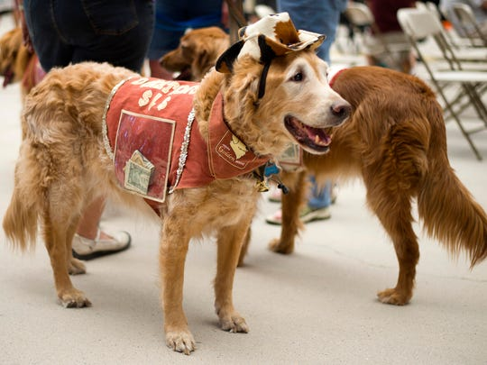 Phoenix Pet Expo in Glendale is free, and your furry friends are welcome.