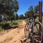 A mountain biker rides along Forest Road 198 from Pyeatt Draw in Arizona's Rim Country near Payson.