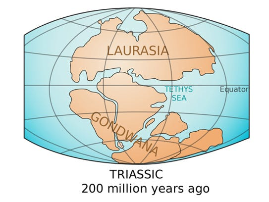 Gondwana was a super-continent that existed more than