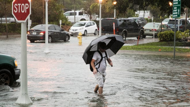 Jacob Brown tries to stay dry while walking to work at Pincher's Crab Shack in downtown Fort Myers on Wednesday. A heavy rain pounded Southwest Florida causing localized flooding.