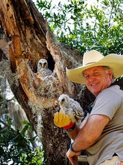 Tim Thompson, critter courier at the Conservancy of Southwest Florida, was named January 2017 volunteer of the month. Here he is posing with rescued owls.