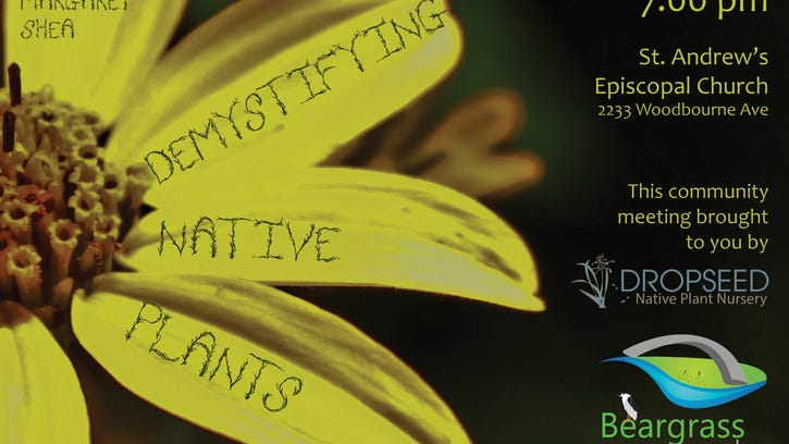 Demystifying Native Plants