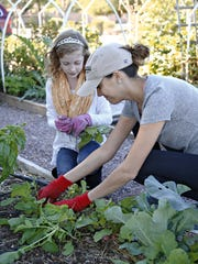 Kelly Siggins, in hat, thins radishes with Morgan Roland,